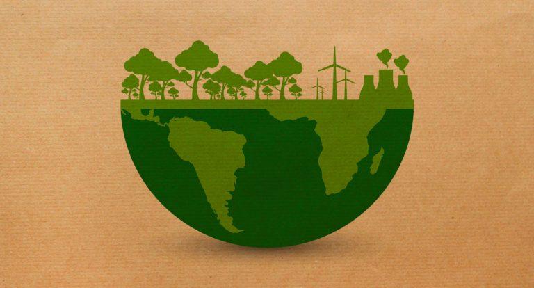 ¿Por qué el cartón es respetuoso con el medio ambiente?